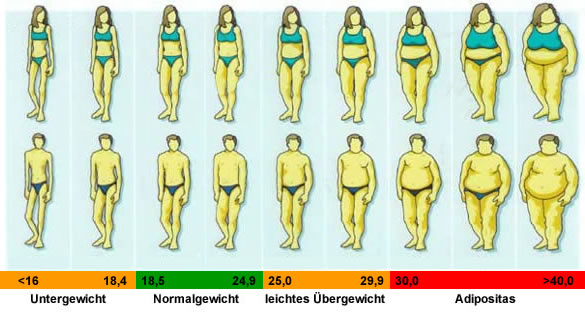 bmi wann übergewicht