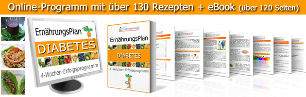 diabetes typ 2 plan